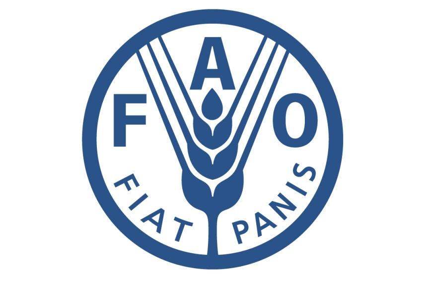fao (1)