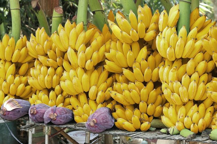 Resultado de imagen para banano de RD en londres