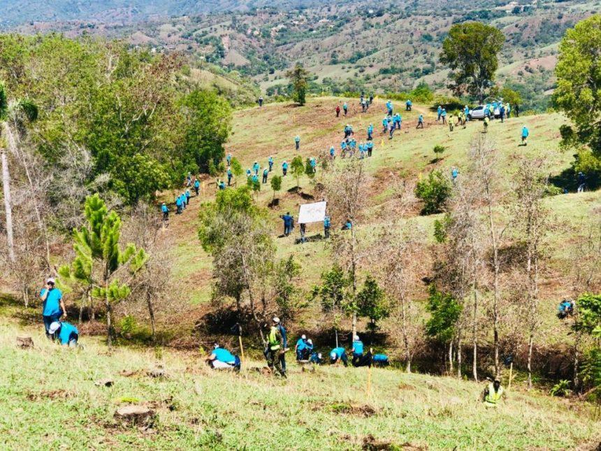 plan-reforestacion-en-cuenca-del-rio-yaque-del-norte-contempla-sembrar-15000-tareas-en-los-proximos-meses-1-1024x768
